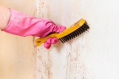 Easy Tricks To Remove Food Stains From Walls Pizzazz